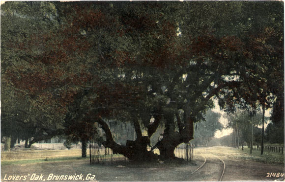 Lovers' Oak, Brunswick, Georgia